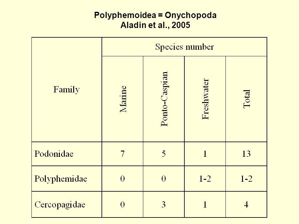 Polyphemoidea = Onychopoda Aladin et al., 2005