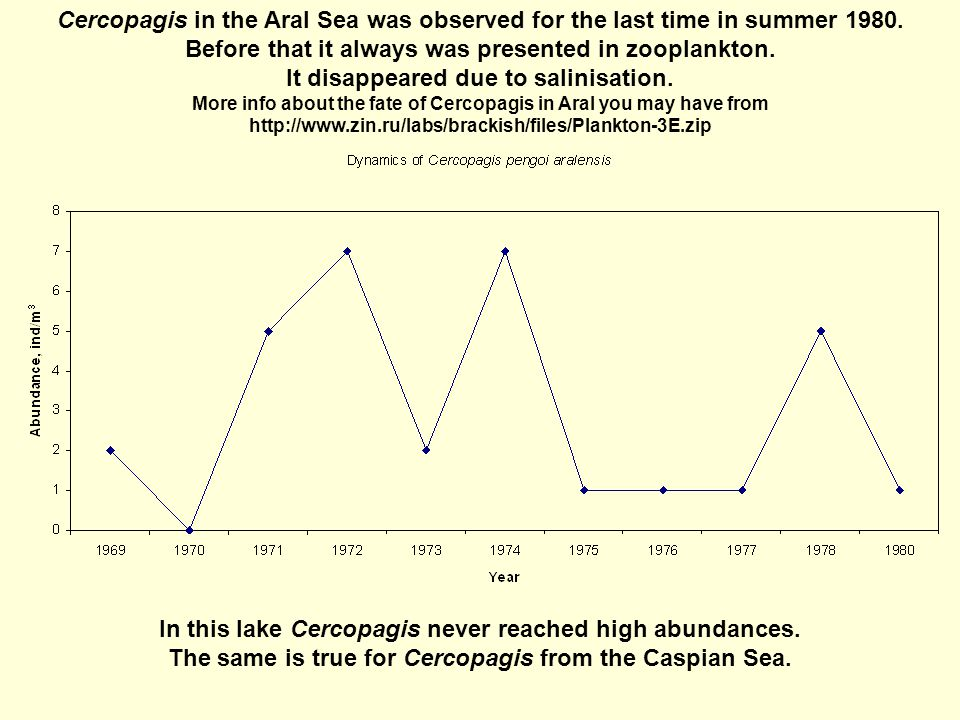 Cercopagis in the Aral Sea was observed for the last time in summer 1980.
