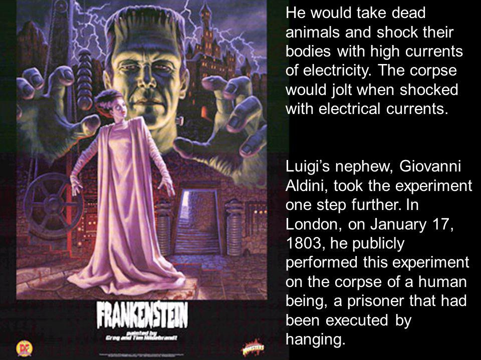 He would take dead animals and shock their bodies with high currents of electricity.