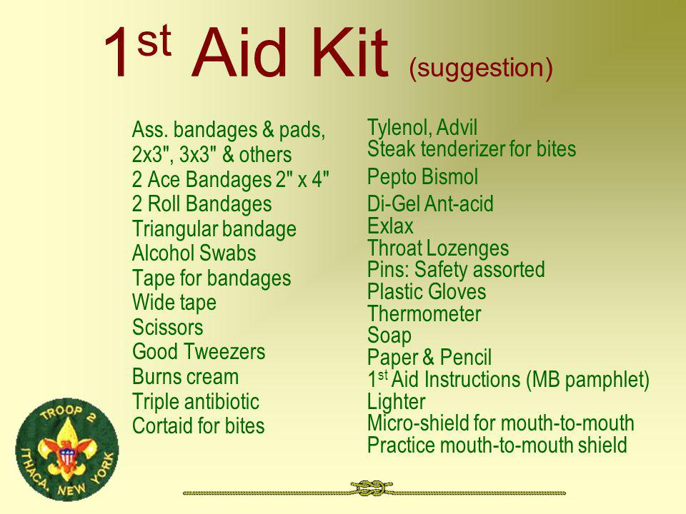 1 st Aid Kit (suggestion) Ass.