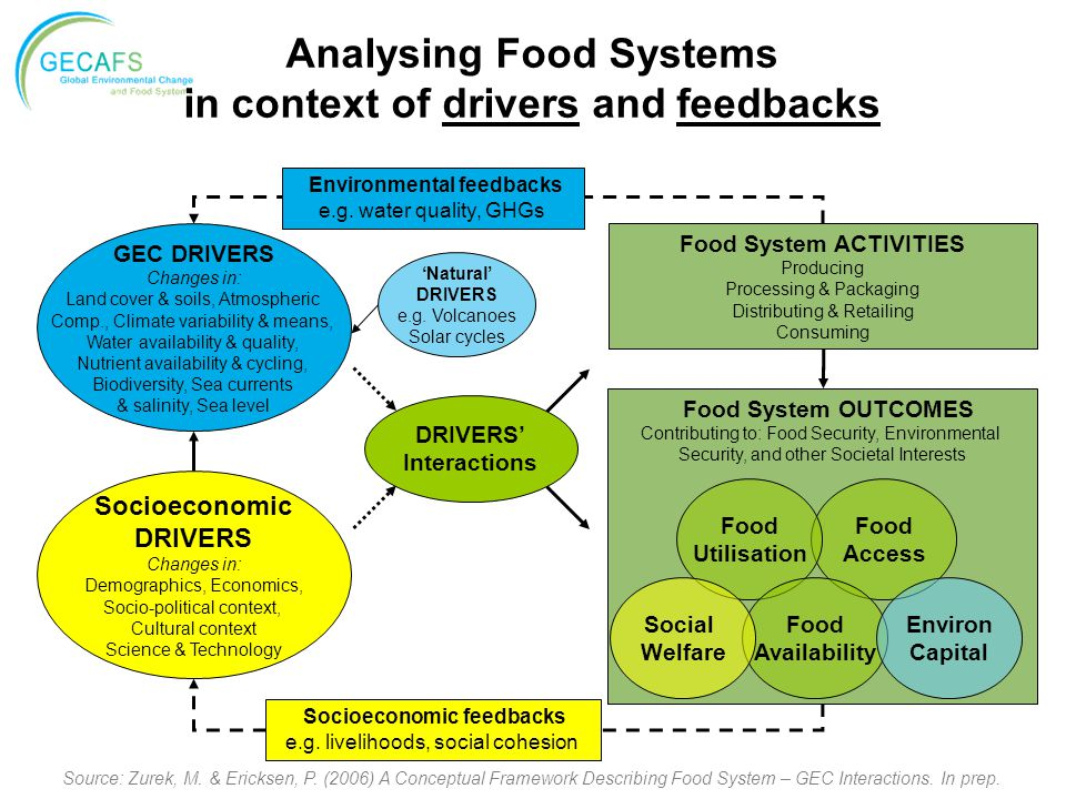Analysing Food Systems in context of drivers and feedbacks Source: Zurek, M. & Ericksen, P. (2006) A Conceptual Framework Describing Food System – GEC