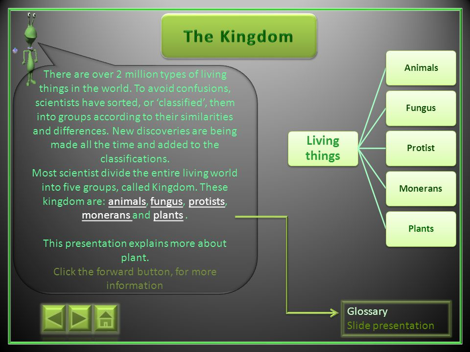 The Kingdoms what are plants? Plants Information Mosses and Liverworts Ferns Horsetails Conifers Flowering plant Grasses Classifications Glossary Quiz