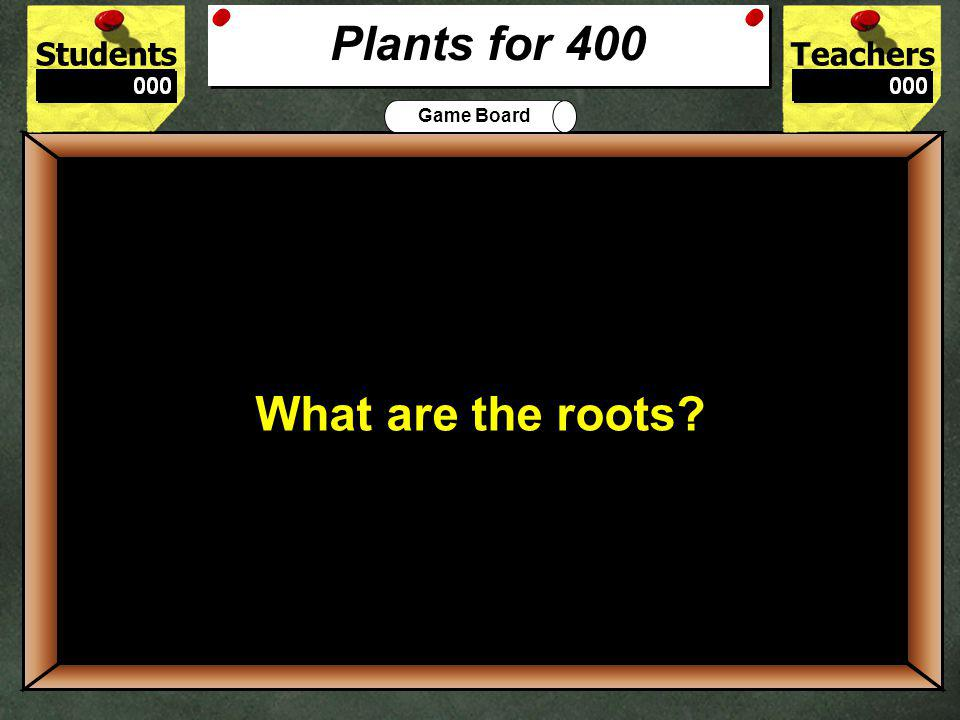 StudentsTeachers Game Board It conducts water from the roots to the cells of the plant.