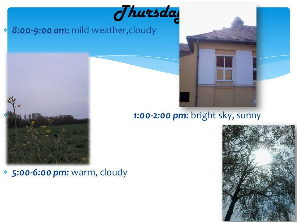 8:00-9:00 am: mild weather,cloudy 1:00-2:00 pm: bright sky, sunny 5:00-6:00 pm: warm, cloudy Thursday