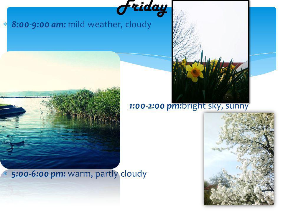 8:00-9:00 am: mild weather, cloudy 1:00-2:00 pm:bright sky, sunny 5:00-6:00 pm: warm, partly cloudy Friday