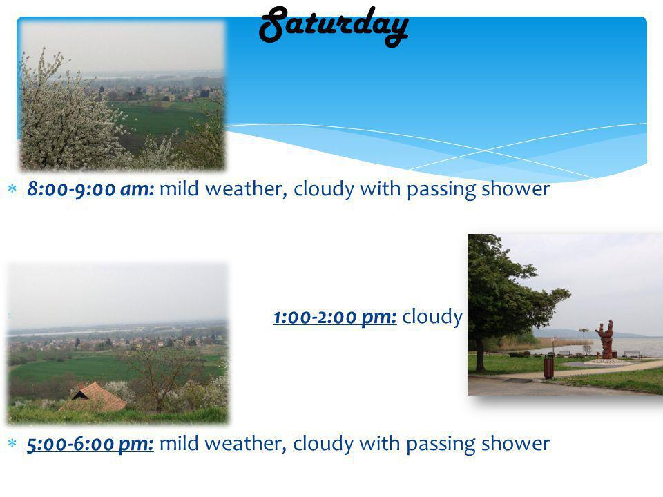 8:00-9:00 am: cold, cloudy 1:00-2:00 pm: bright sky, sunny 5:00-6:00 pm: cold with heavy rain Sunday