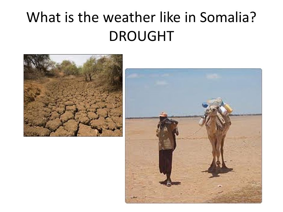 What is the weather like in Somalia DROUGHT