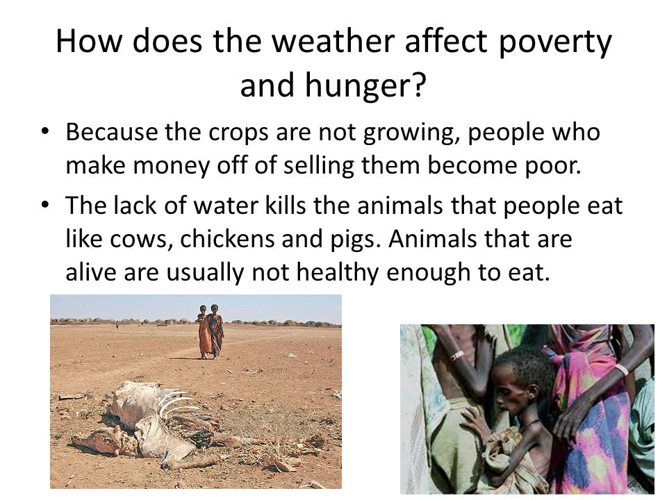 How does the weather affect poverty and hunger.