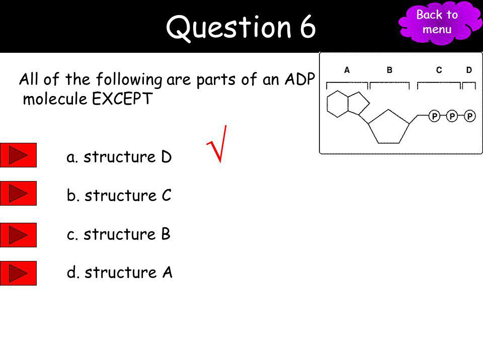 Question 5 Which of the following are used in the overall reactions for photosynthesis? a. carbon dioxide b. water c. light d. all of the above 27 Bac