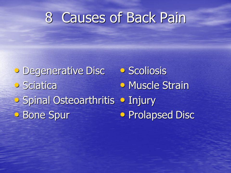 8 Causes of Back Pain Degenerative Disc Degenerative Disc Sciatica Sciatica Spinal Osteoarthritis Spinal Osteoarthritis Bone Spur Bone Spur Scoliosis Scoliosis Muscle Strain Muscle Strain Injury Injury Prolapsed Disc Prolapsed Disc