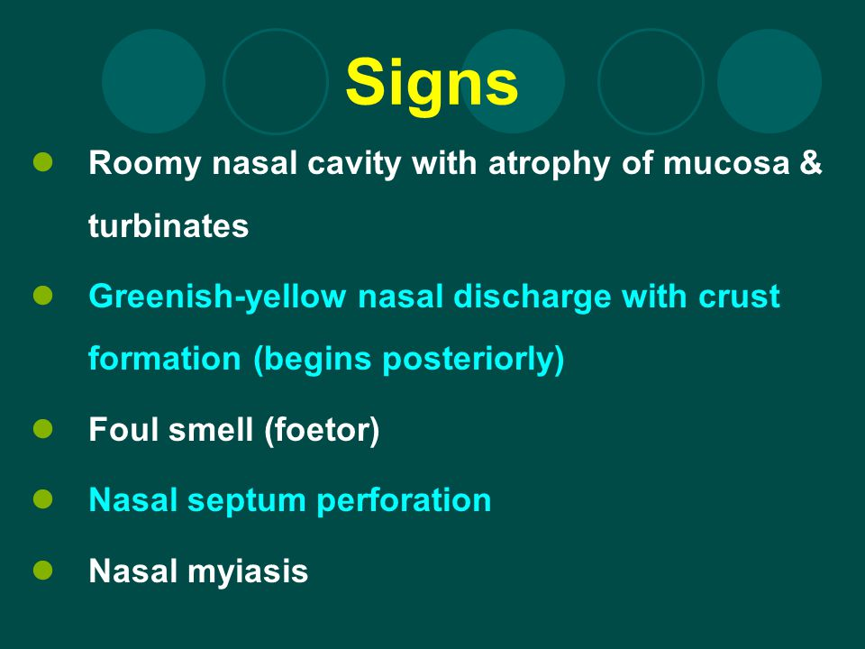 Signs Roomy nasal cavity with atrophy of mucosa & turbinates Greenish-yellow nasal discharge with crust formation (begins posteriorly) Foul smell (foe