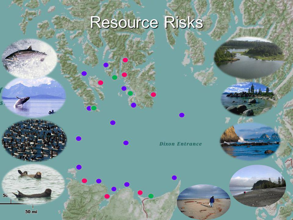 Resource Risks
