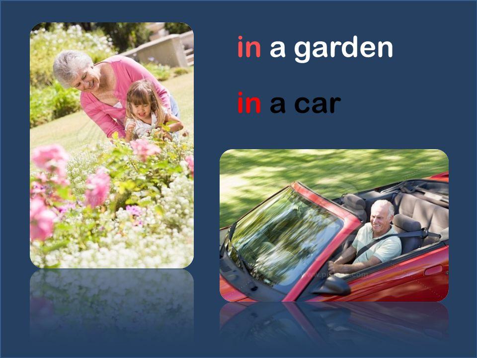 in a garden in a car