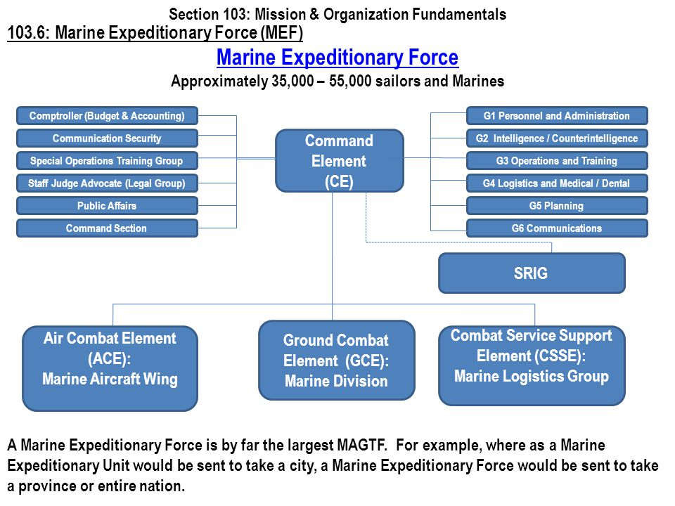 www.battalionaidstation.com 103.6: Marine Expeditionary Force (MEF) Section 103: Mission & Organization Fundamentals Command Element (CE) Marine Exped