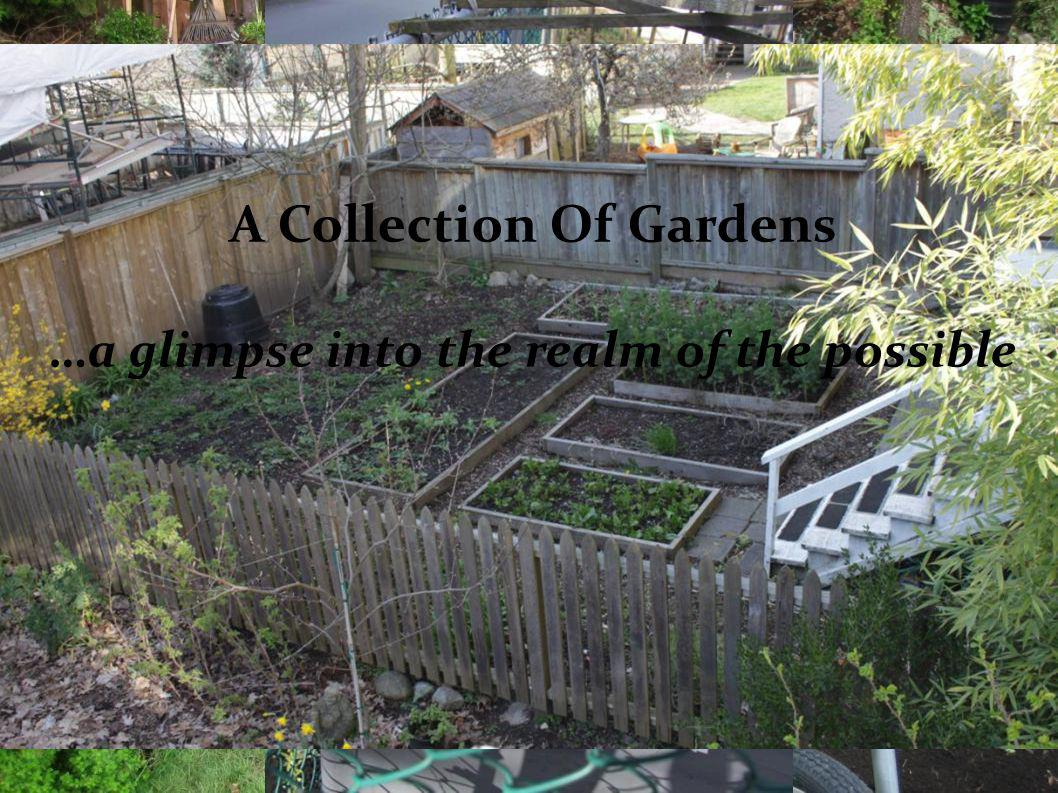 A Collection Of Gardens …a glimpse into the realm of the possible