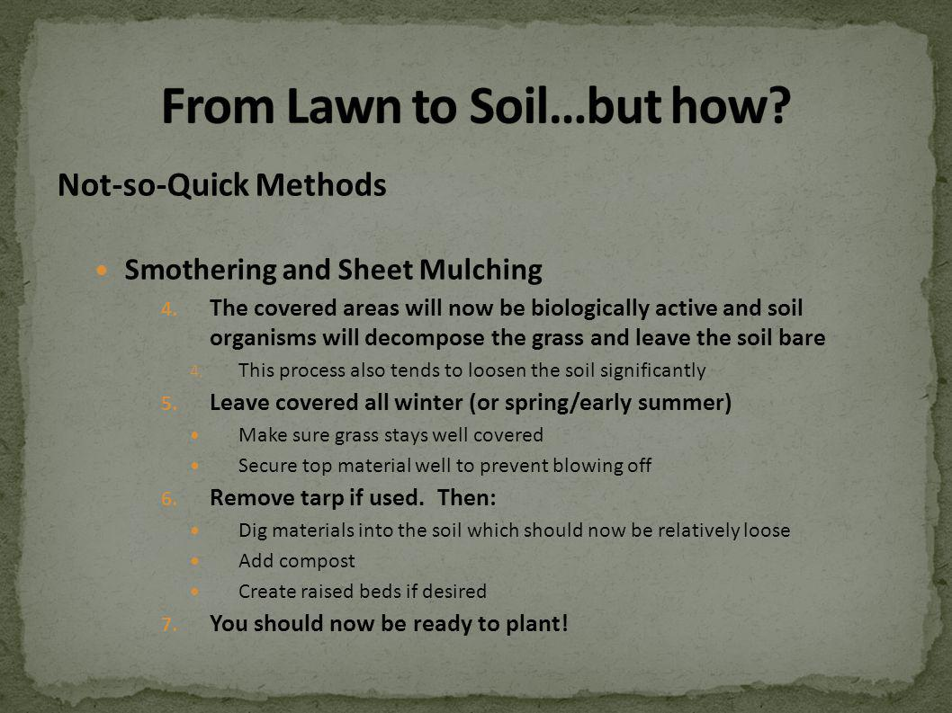 Not-so-Quick Methods Smothering and Sheet Mulching 4.