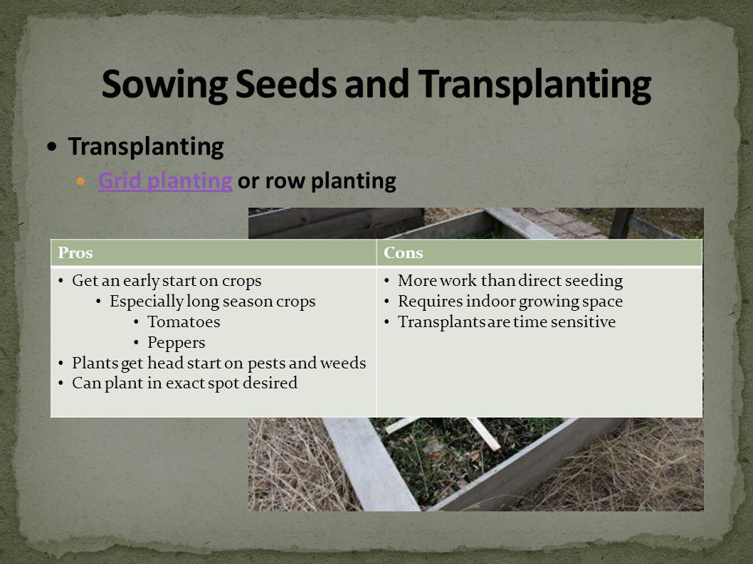 Transplanting Grid planting or row planting Grid planting ProsCons Get an early start on crops Especially long season crops Tomatoes Peppers Plants get head start on pests and weeds Can plant in exact spot desired More work than direct seeding Requires indoor growing space Transplants are time sensitive
