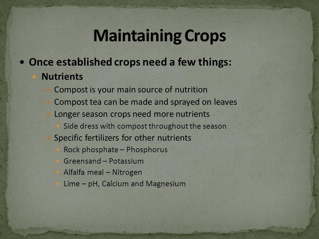 Once established crops need a few things: Nutrients Compost is your main source of nutrition Compost tea can be made and sprayed on leaves Longer season crops need more nutrients Side dress with compost throughout the season Specific fertilizers for other nutrients Rock phosphate – Phosphorus Greensand – Potassium Alfalfa meal – Nitrogen Lime – pH, Calcium and Magnesium