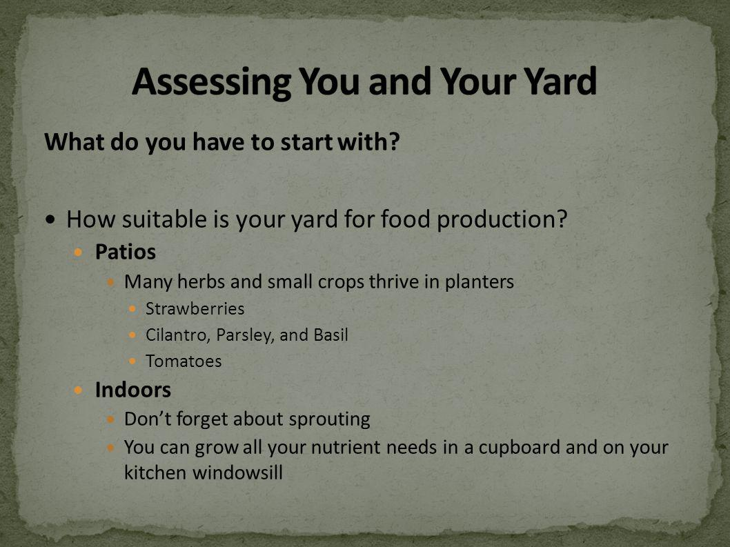 What do you have to start with? How suitable is your yard for food production? Patios Many herbs and small crops thrive in planters Strawberries Cilan