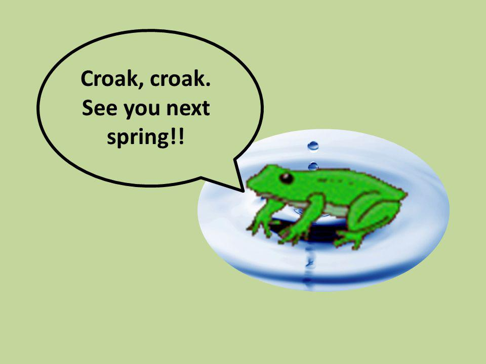Croak, croak. See you next spring!!
