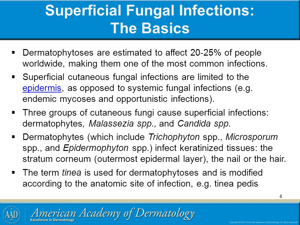 4 Superficial Fungal Infections: The Basics Dermatophytoses are estimated to affect 20-25% of people worldwide, making them one of the most common inf