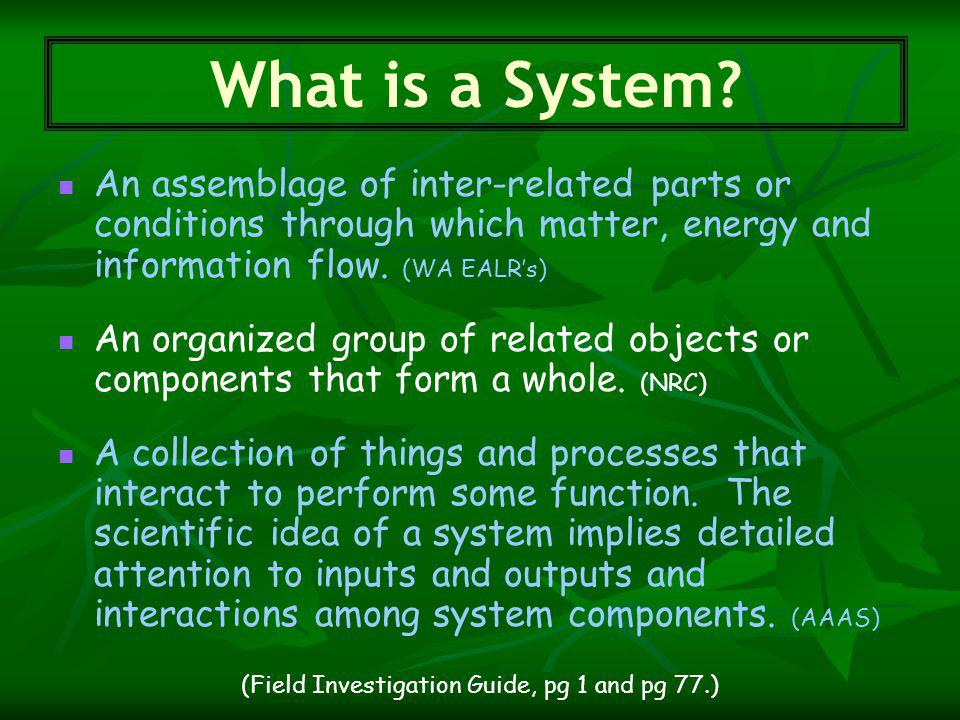 An assemblage of inter-related parts or conditions through which matter, energy and information flow.