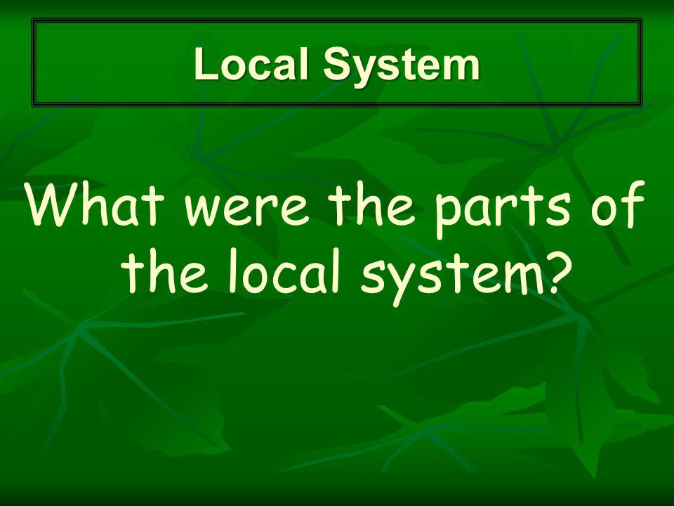 What were the parts of the local system Local System