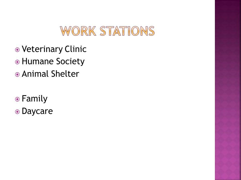 Veterinary Clinic Humane Society Animal Shelter Family Daycare