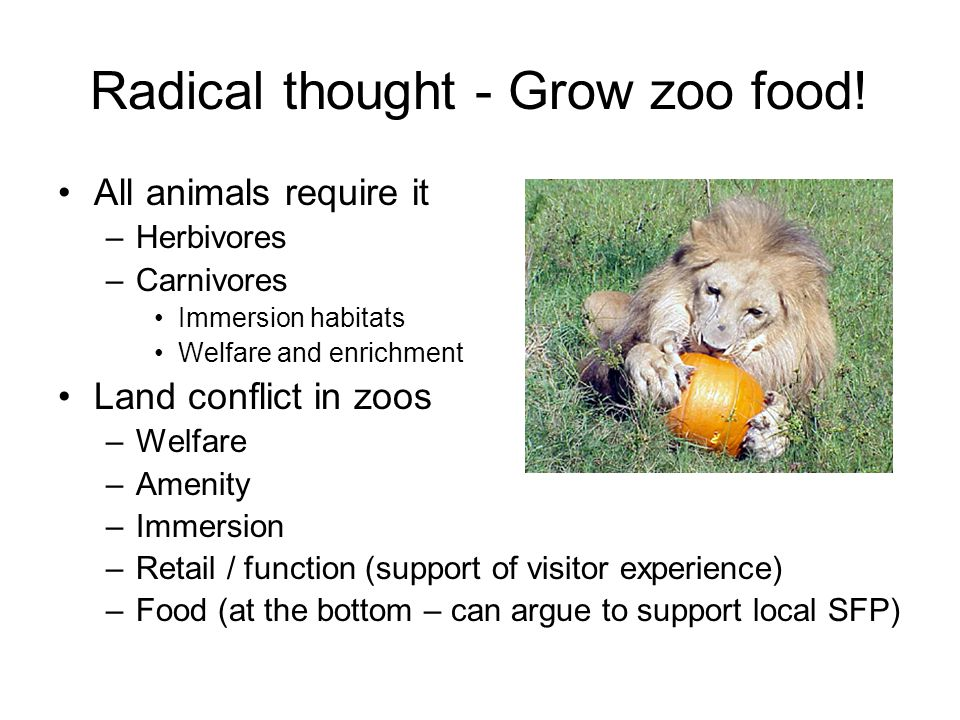 Radical thought - Grow zoo food.