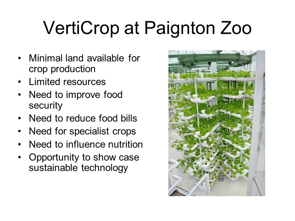 VertiCrop at Paignton Zoo Minimal land available for crop production Limited resources Need to improve food security Need to reduce food bills Need for specialist crops Need to influence nutrition Opportunity to show case sustainable technology