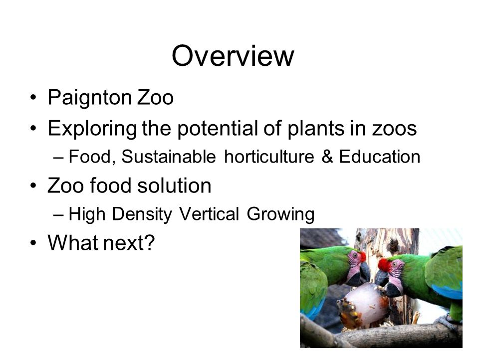 Overview Paignton Zoo Exploring the potential of plants in zoos –Food, Sustainable horticulture & Education Zoo food solution –High Density Vertical Growing What next