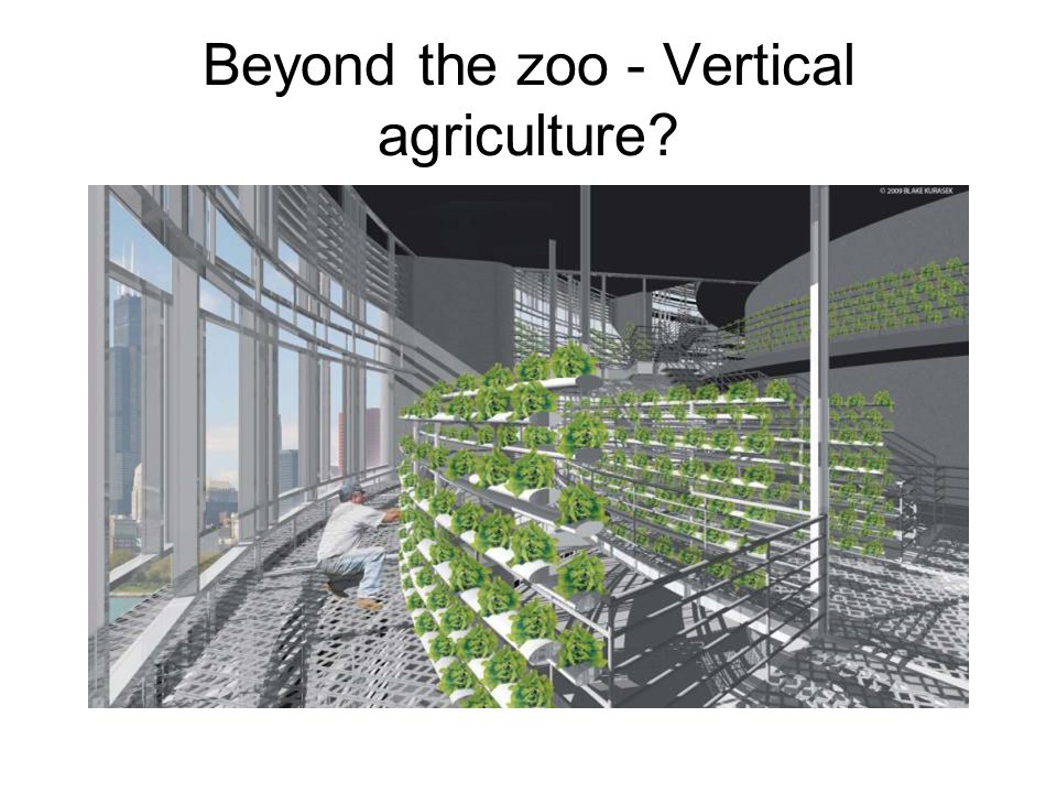 Beyond the zoo - Vertical agriculture?