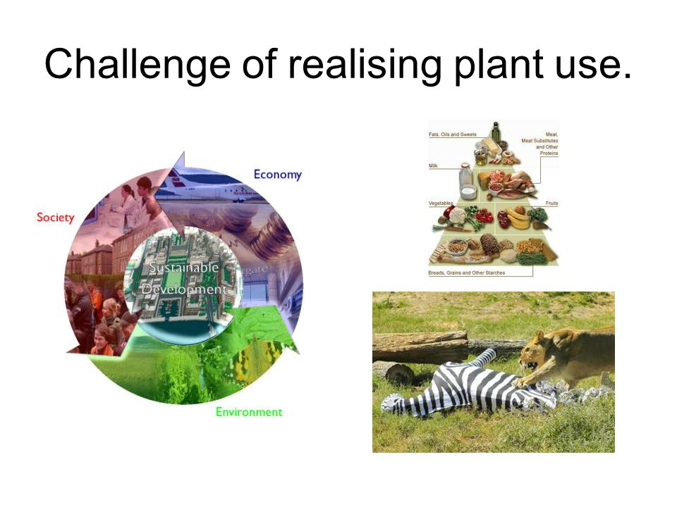 Challenge of realising plant use.