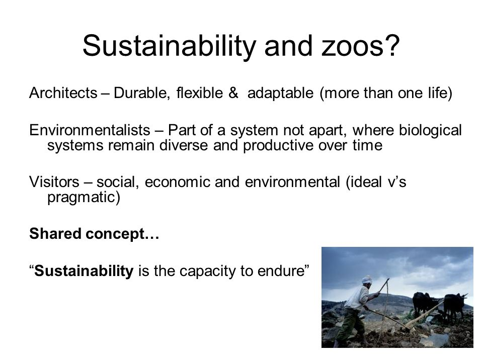 Sustainability and zoos.