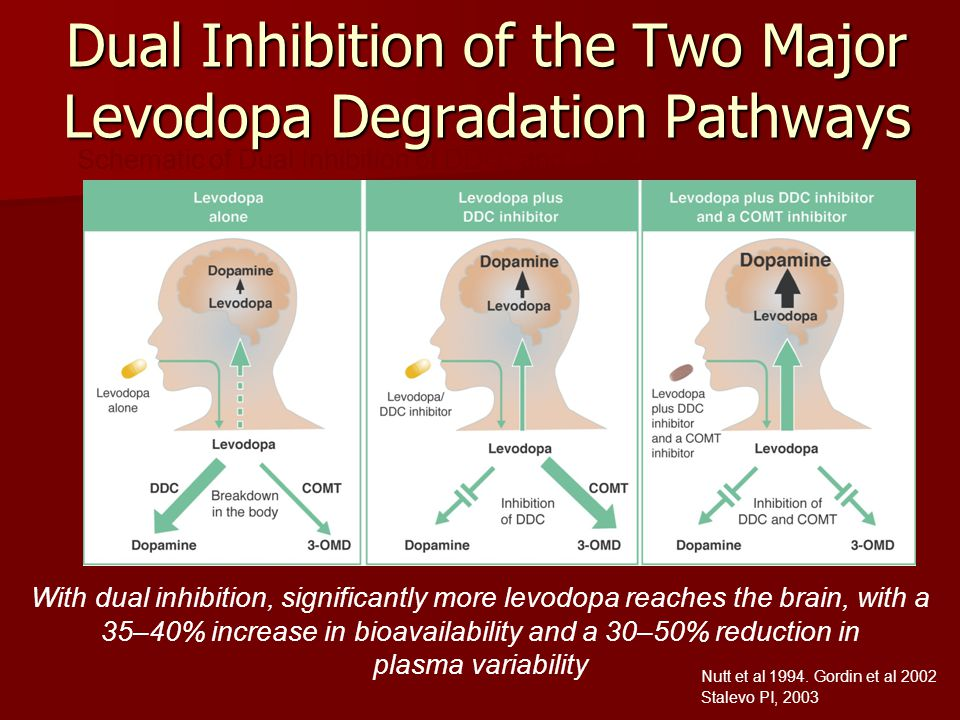 Dual Inhibition of the Two Major Levodopa Degradation Pathways With dual inhibition, significantly more levodopa reaches the brain, with a 35–40% incr