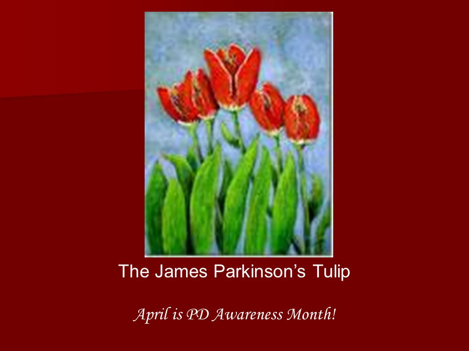 The James Parkinsons Tulip April is PD Awareness Month!