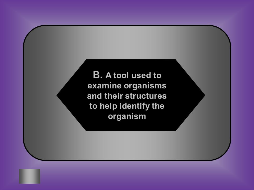 A:B: A chart that classifies organisms according to their DNA A tool used to examine organisms and their structures to help identify the organism #1 What is a dichotomous key.