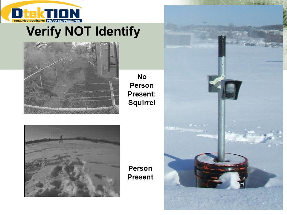 No Person Present: Squirrel Person Present Verify NOT Identify