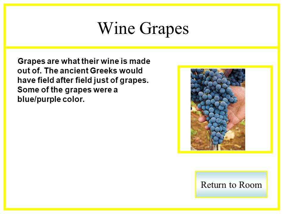 Wine Grapes Grapes are what their wine is made out of.
