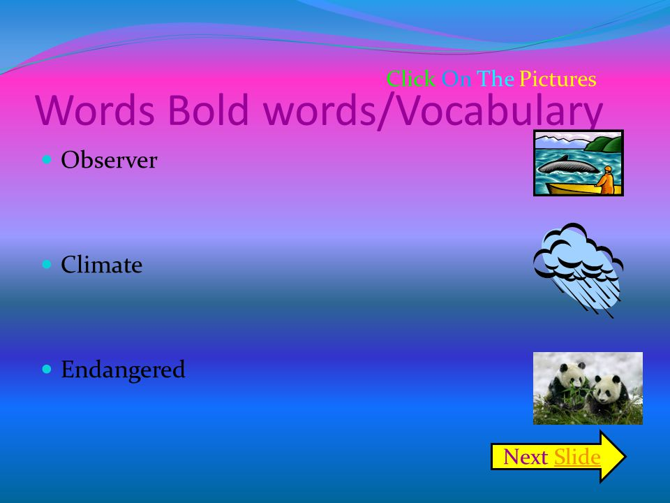 Words Bold words/Vocabulary Observer Climate Endangered Click On The Pictures Next SlideSlide