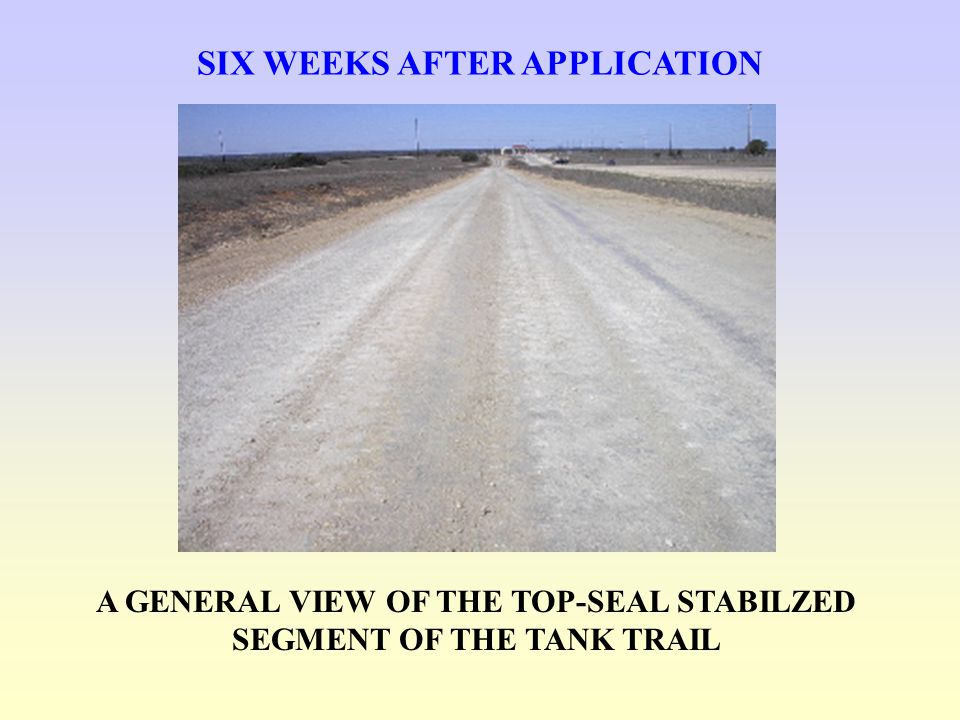 SIX WEEKS AFTER APPLICATION A GENERAL VIEW OF THE TOP-SEAL STABILZED SEGMENT OF THE TANK TRAIL