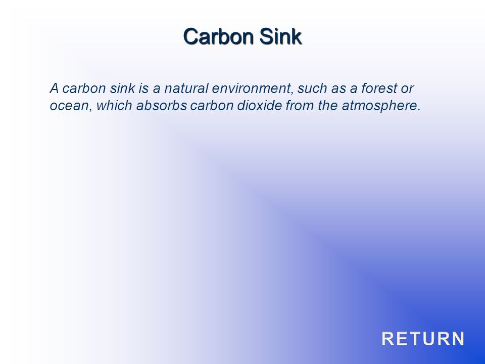 A carbon sink is a natural environment, such as a forest or ocean, which absorbs carbon dioxide from the atmosphere. Carbon Sink