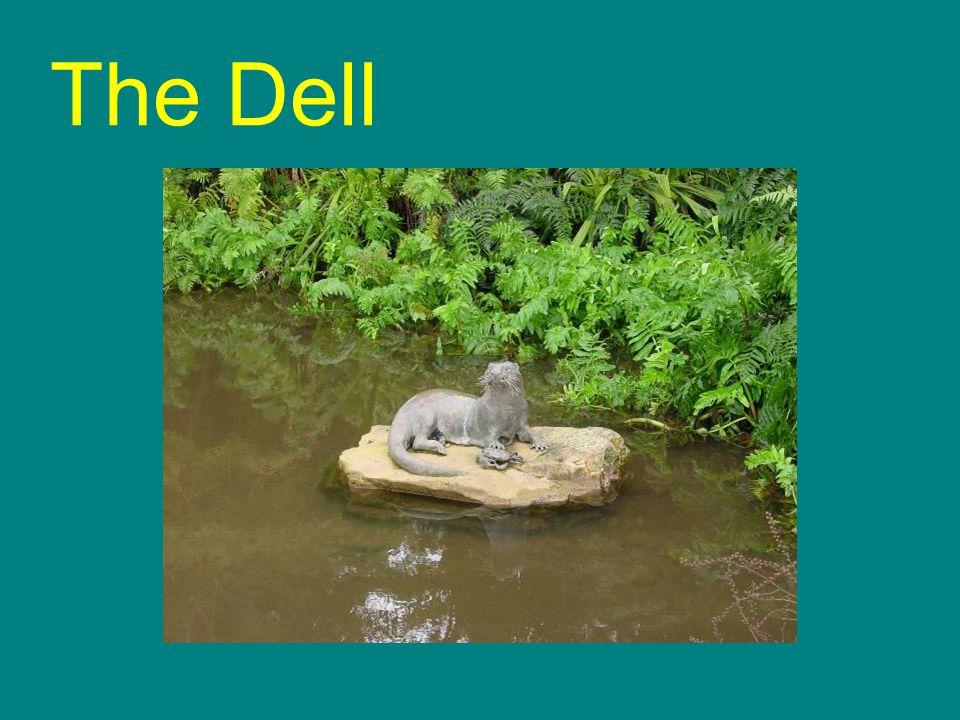 The Dell