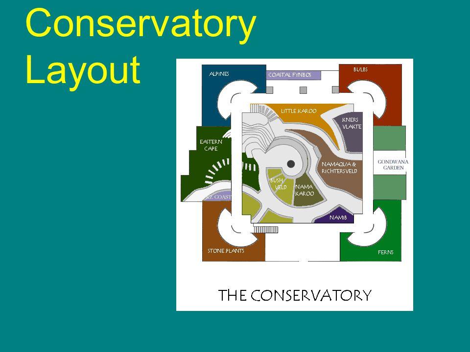 Conservatory Layout