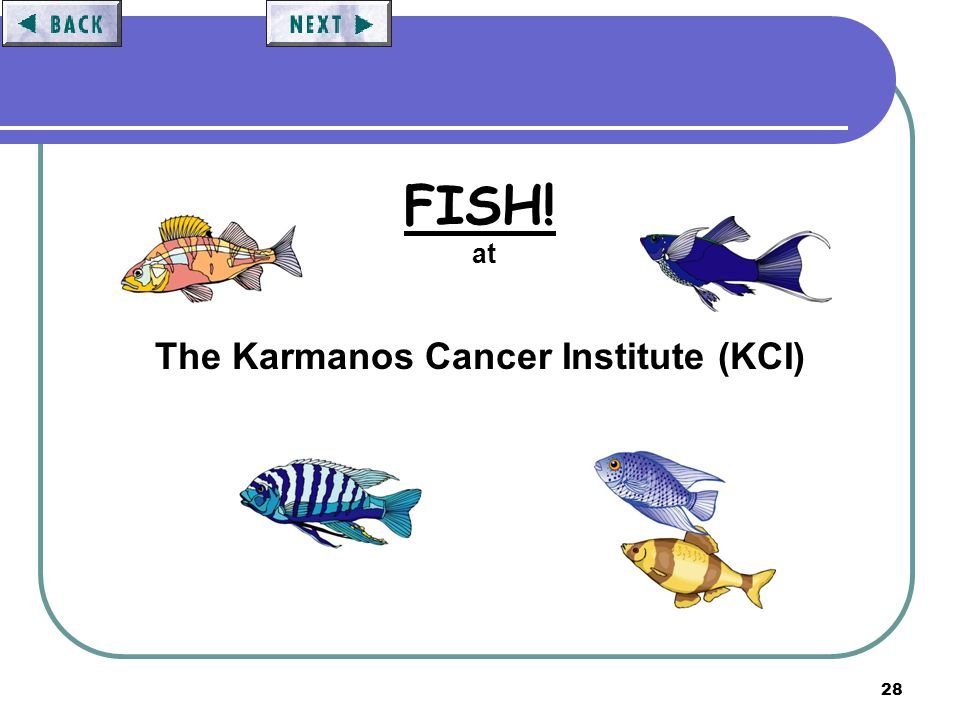 28 FISH! at The Karmanos Cancer Institute (KCI)