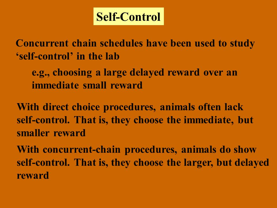 Self-Control Concurrent chain schedules have been used to study self-control in the lab e.g., choosing a large delayed reward over an immediate small