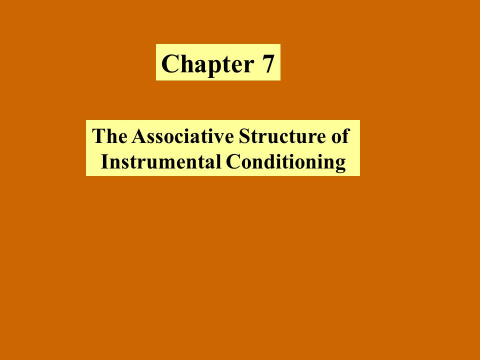 Chapter 7 The Associative Structure of Instrumental Conditioning