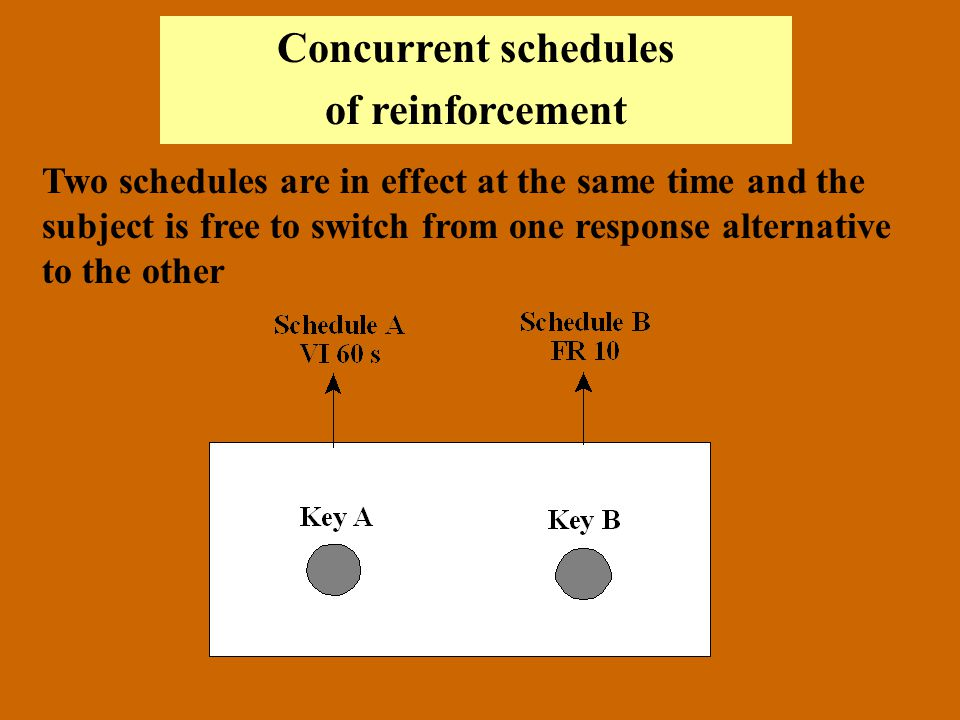 Concurrent schedules of reinforcement Two schedules are in effect at the same time and the subject is free to switch from one response alternative to