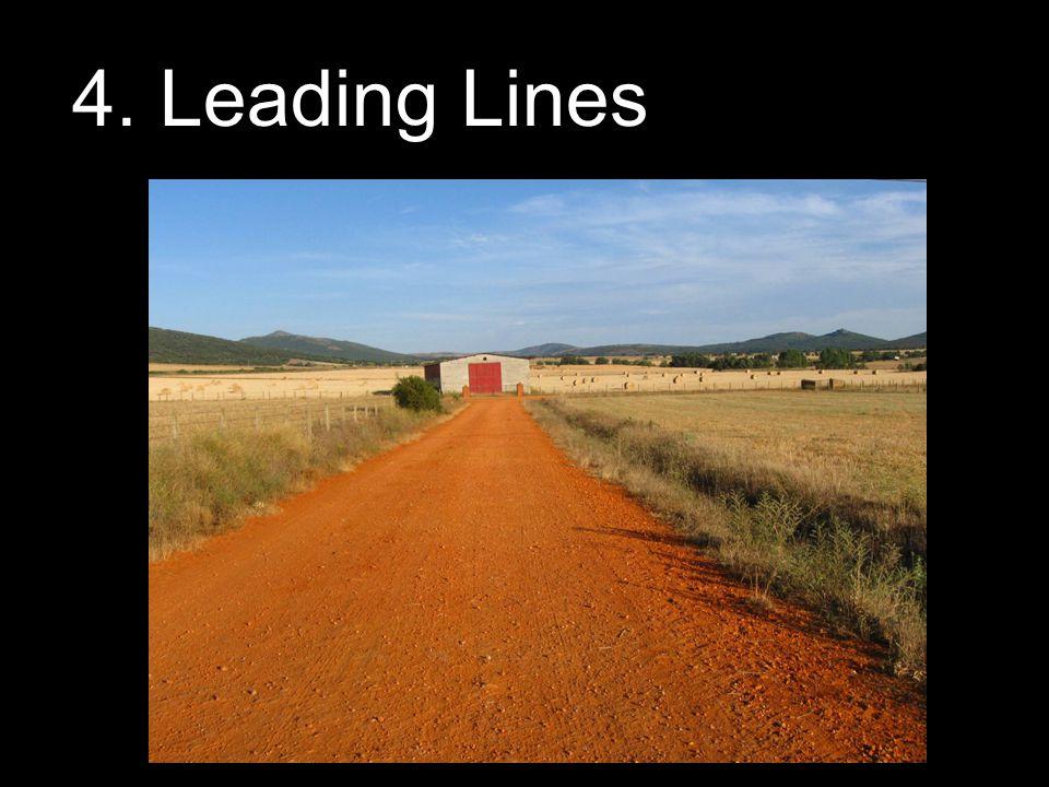 4. Leading Lines
