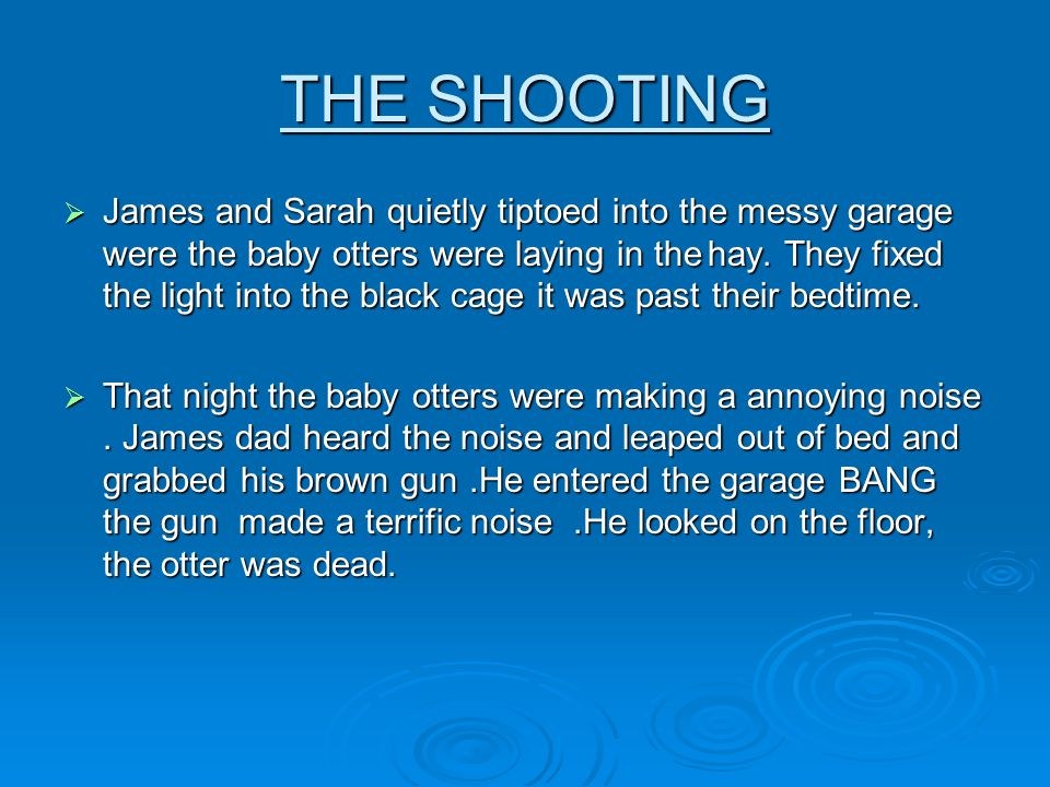 THE SHOOTING James and Sarah quietly tiptoed into the messy garage were the baby otters were laying in the hay.